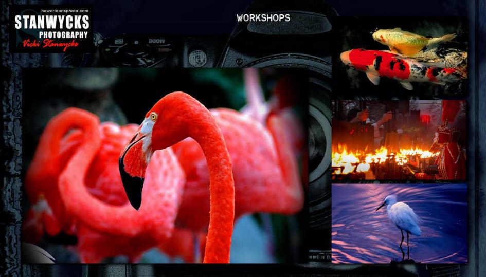 Studio Web 2011-020